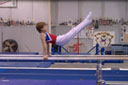 Level 1 Parallel Bars