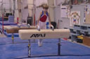 Level 1 Pommel Horse