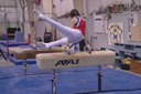 Level 2 Pommel Horse